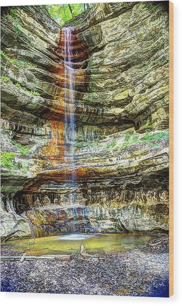 Canyon Starved Rock State Park Wood Print