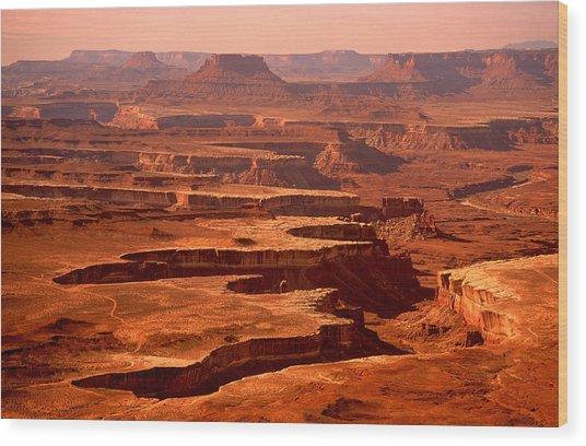 Canyonlands Utah Wood Print
