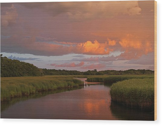 Cape Cod Bells Neck  Wood Print