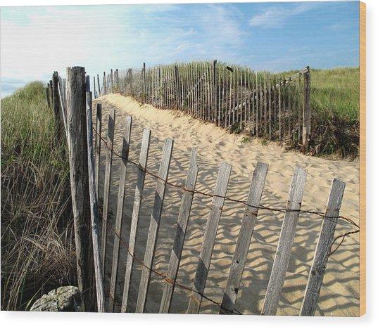 Cape Cod Dune Fencing Wood Print