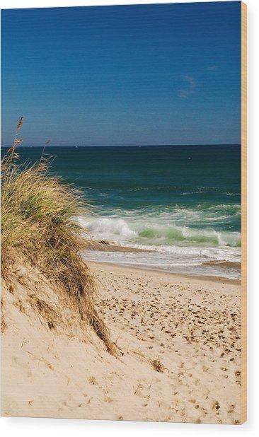 Cape Cod Massachusetts Beach Wood Print