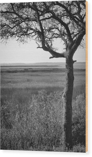 Wood Print featuring the photograph Cape Fear River View From Fort Fisher Nc by Willard Killough III