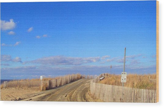 Cape Henlopen 13 Wood Print by Cynthia Harvey