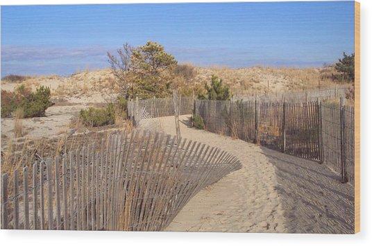 Cape Henlopen 2 Wood Print by Cynthia Harvey