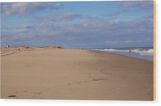 Cape Henlopen 8 Wood Print by Cynthia Harvey