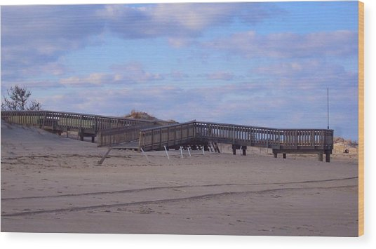 Cape Henlopen 9 Wood Print by Cynthia Harvey