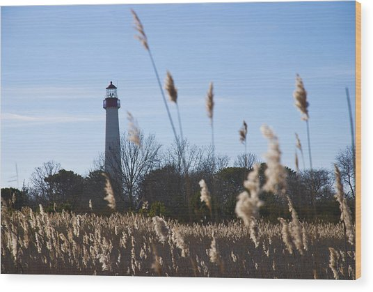 Wood Print featuring the photograph Cape May Light by Jennifer Ancker