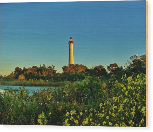 Cape May Lighthouse Above The Flowers Wood Print