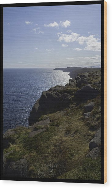 Cape Spear Coast Line  Wood Print
