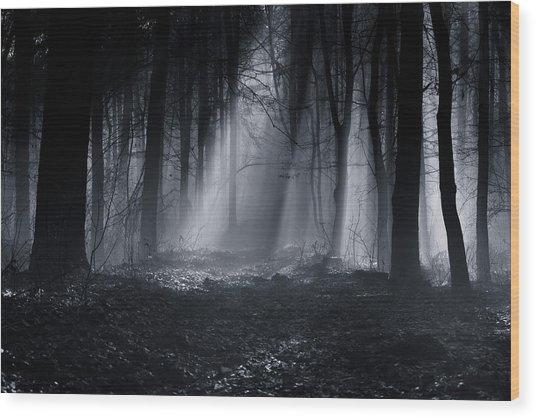 Capela Forest Wood Print by Julien Oncete