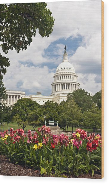 Capitol Buildingwashington Dc And Flower Garden Wood Print