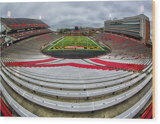 Capitol One Field Wood Print