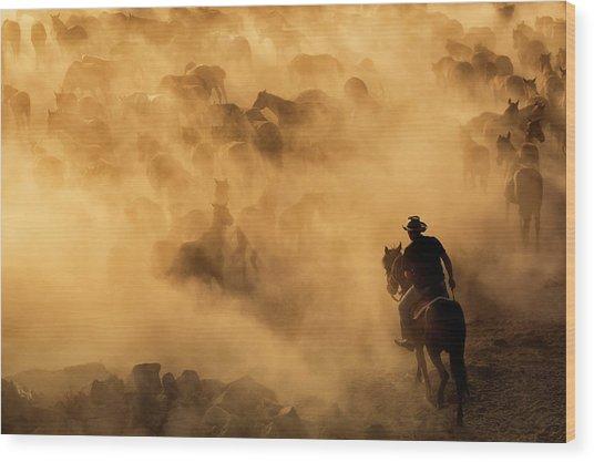 Cappadocia Wild Horses Wood Print