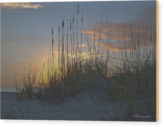 Captiva Sunset Wood Print by Mike Fitzgerald