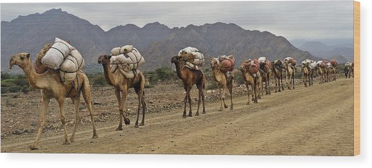 Caravan In The Desert Wood Print by Liudmila Di