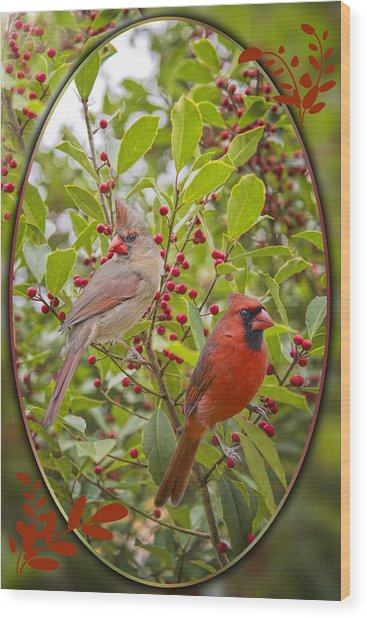 Cardinals In Holly Wood Print by Bonnie Barry