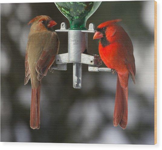 Cardinals Wood Print by John Kunze