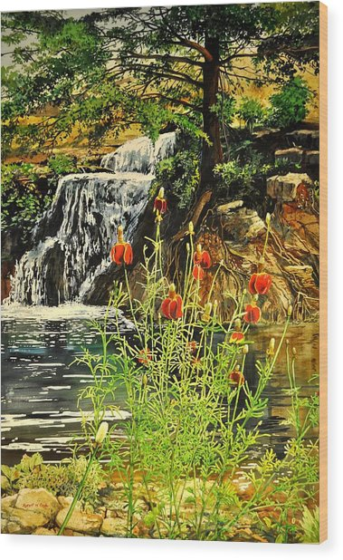 Carey Falls At Star Ranch Wood Print