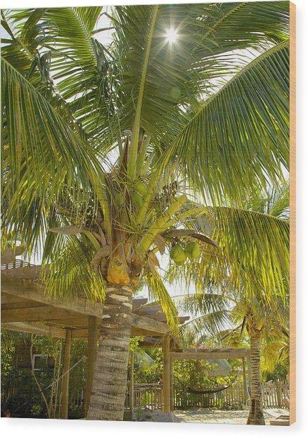 Caribbean Parasol Wood Print