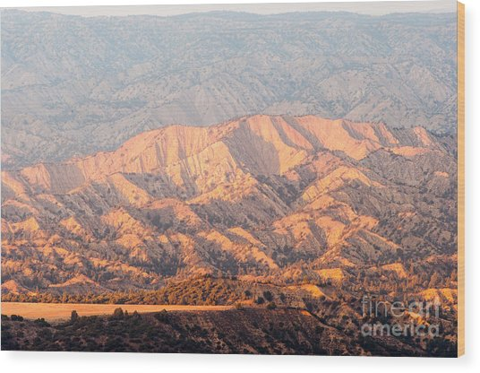 Carizzo Plains Nm  2-8574 Wood Print by Stephen Parker