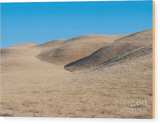 Carizzo Plains Nm  2-9647 Wood Print by Stephen Parker