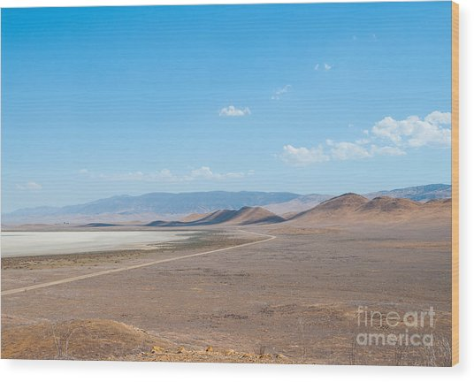 Carizzo Plains Nm  5-9649 Wood Print by Stephen Parker