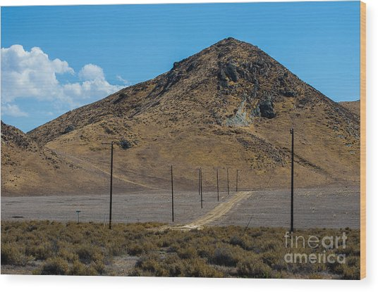 Carizzo Plains Nm  5-9653 Wood Print by Stephen Parker