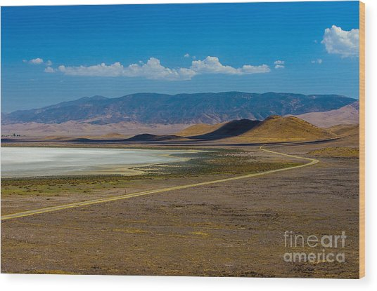 Carizzo Plains Nm  5-9656 Wood Print by Stephen Parker