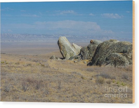 Carizzo Plains Nm  5-9657 Wood Print by Stephen Parker