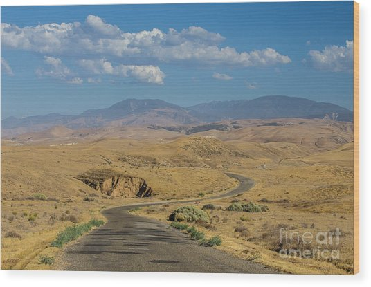 Carizzo Plains Nm  5-9664 Wood Print by Stephen Parker