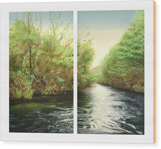 Carmel River Mid-watershed Wood Print by Logan Parsons