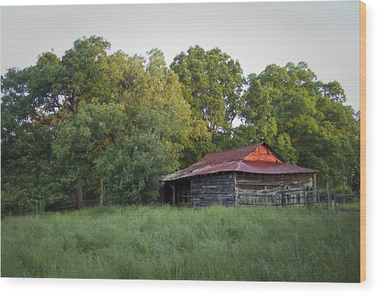 Carolina Horse Barn Wood Print
