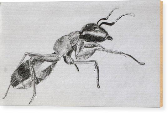 Carpenter Wood Print