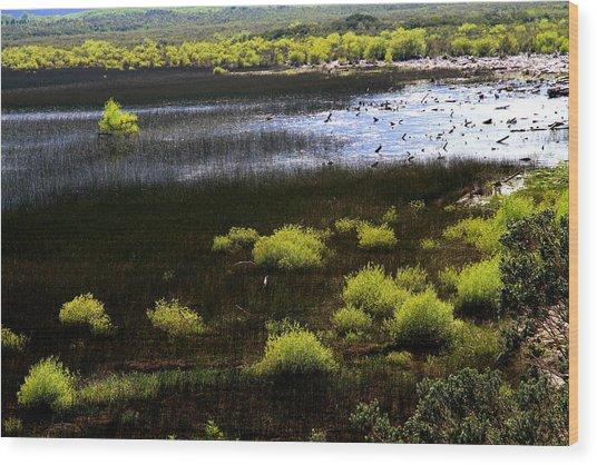Carretera Austral River Wood Print by Arie Arik Chen