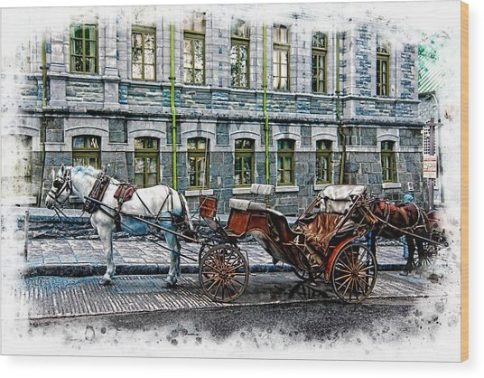 Carriage Rides Series 06 Wood Print