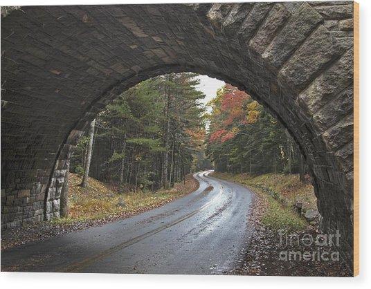 Carriage Bridge Wood Print