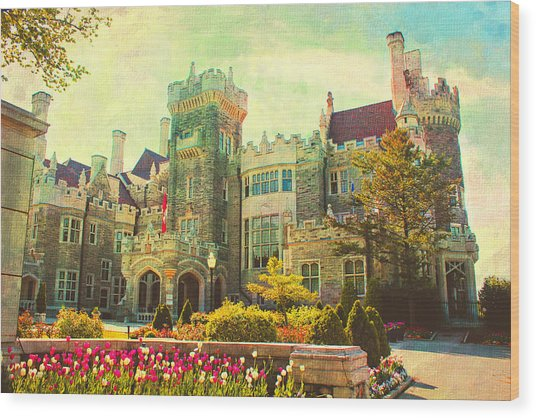 Casa Loma Series 03 Wood Print