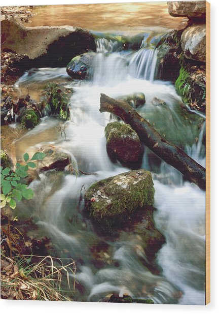 Cascades In Roman Nose State Park Wood Print