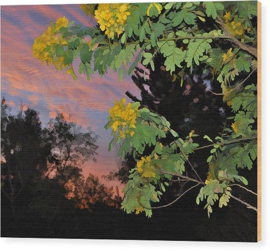 Casia Sunrise Wood Print