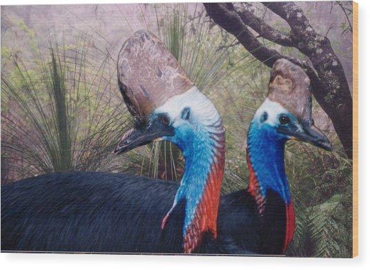 Cassowaries At Home Wood Print