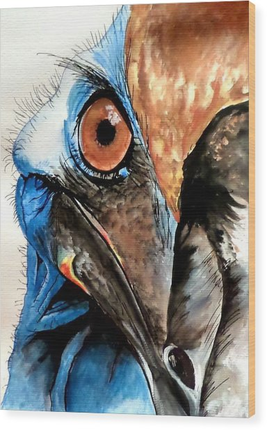 Cassowary No 2 Wood Print