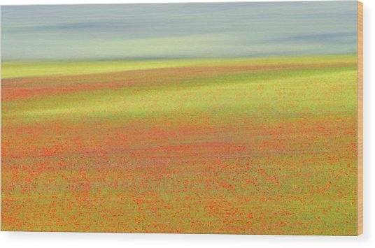 Castelluccio Colors Wood Print