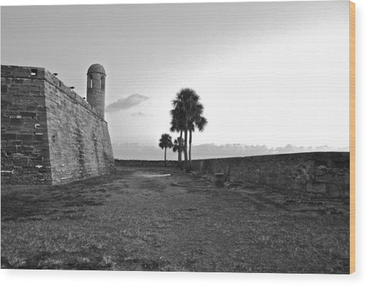 Castillo De San Marcos View 2 Wood Print