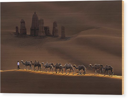 Castle And Camels Wood Print