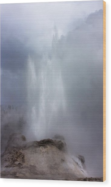 Castle Geyser In June Wood Print