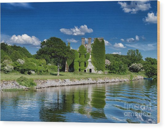 Castle Menlo  Wood Print