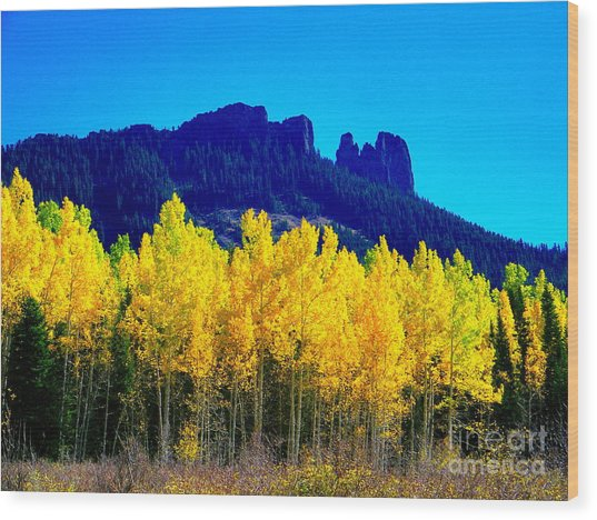 Autumn Castle Rock Aspens Wood Print