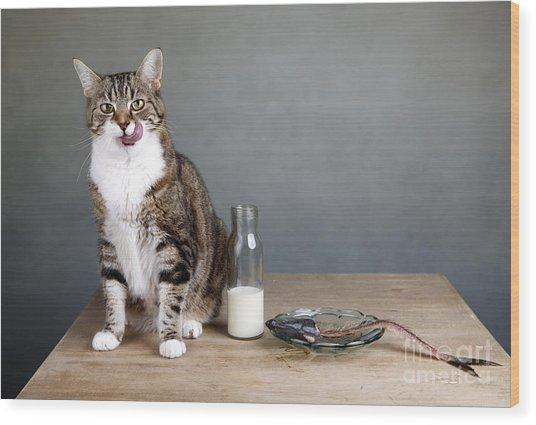 Cat And Herring Wood Print