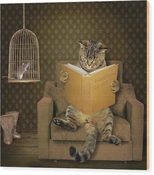 Cat And His Pet..... Wood Print by Iryna Kuznetsova (iridi)