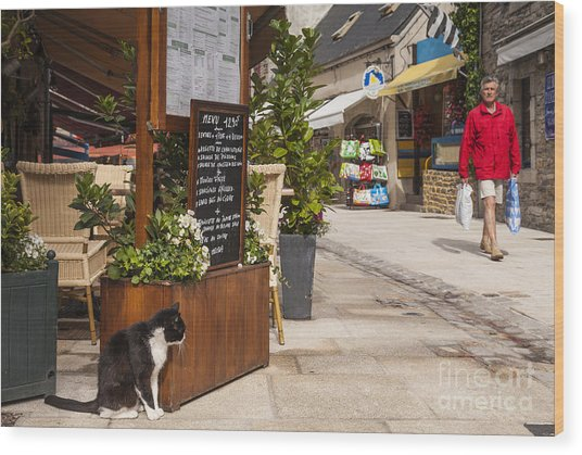 Cat And Restaurant Concarneau Brittany France Wood Print by Colin and Linda McKie
